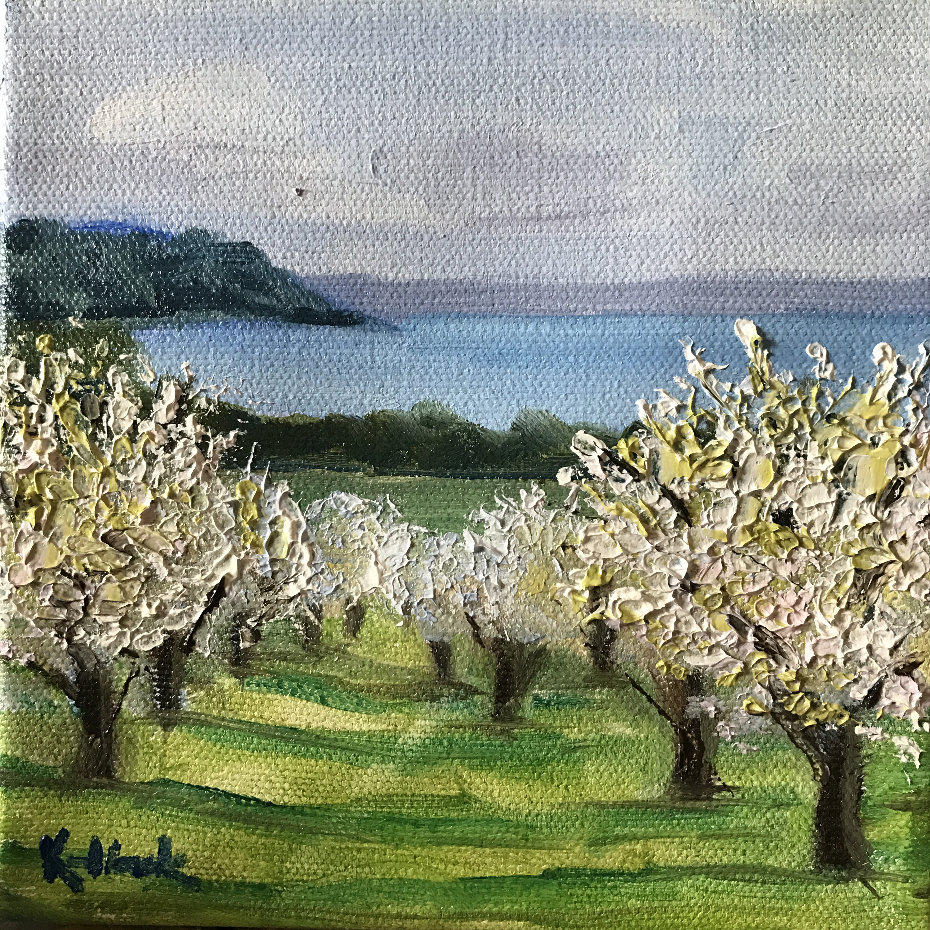 Blossom Day painting, WOMPBlossomday, cherry blossoms in traverse city
